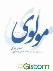 اشعار ترکی مولانا و ترکی سرایان مکتب شمس و مولوی